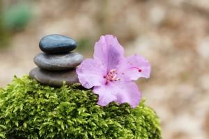 Sequedad vaginal: La importancia del balance físico y emocional